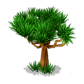 Res drago tree 3.png