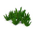 Res curative watergrass 5.png