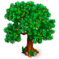Sallowthorn tree.png