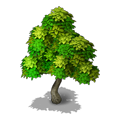 Res tree 2