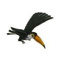 Toucan bonus
