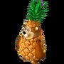 Pineapple bear deco