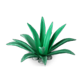 Res agave 1.png