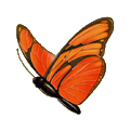 Coll butterflies dryad.png
