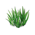 Res fairytale grass 2.png