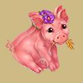 Coll farm piggy