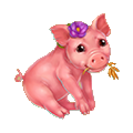 Coll farm piggy.png