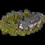 Rhino deco