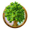 Dream icon dark forest