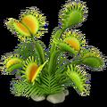 Res flytrap 1.png