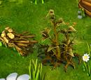Brushwood (resource)