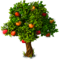 Res fairytale apple tree 1.png