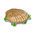 Seashell map object.png