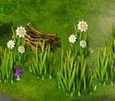 Grass (resource)