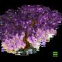 Blooming oaktae deco