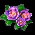Res geranium 2.png