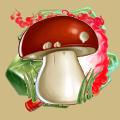 Coll mushroom boletus.png