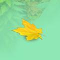 Autumn leaf bonus.png