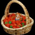 Berry pool deco