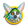 Quest icon lemurguide
