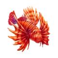 Coll fish ribbon seal.png