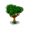Res drago tree 2.png