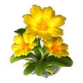 Sunny flower deco