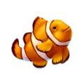 Coll fish clownfish.png