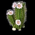 Res cactus 1.png