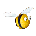 Coll honey bee.png
