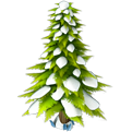Res spruce snowy 2
