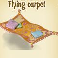 Flying carpet.png