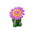 Res blooming cactus 1.png