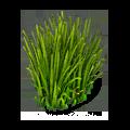 Res garden grass 2.png