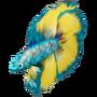 Unusual fish deco