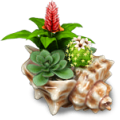 Seashell with flowers deco