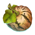 Almond pumpkin.png