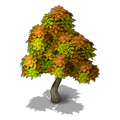 Res tree 1