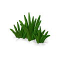 Res curative watergrass 4.png