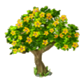 Spring tree yellow blooms