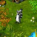 Lemur2.png