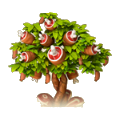 Meat tree.png