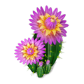 Res blooming cactus 2.png