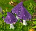 Mushrooms resource.png