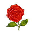 Coll flower rose.png