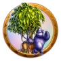 Dream icon jungle