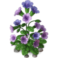 Res lungwort 3.png