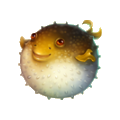 Coll fish fugu.png