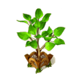 Graceful tree deco