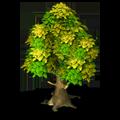 Res tree 3
